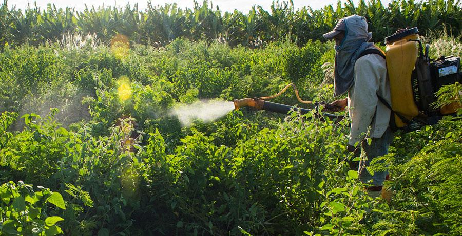 آشنایی با قارچ کشها و حشره کش و کنه کش های – علف کش جدید و نحوه مصرف